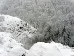 jagodina_stijena